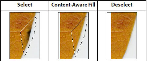 Content-Aware Fill